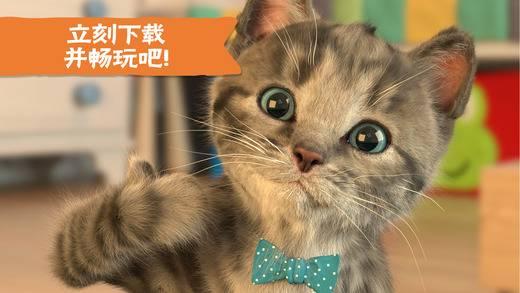 Little Kitten - 我最喜爱的猫猫截图4