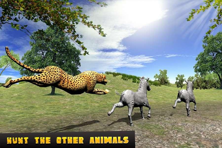 猎豹攻击模拟