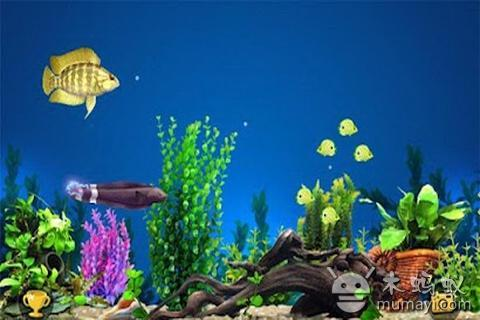 捕食鱼 Fish Predator截图2