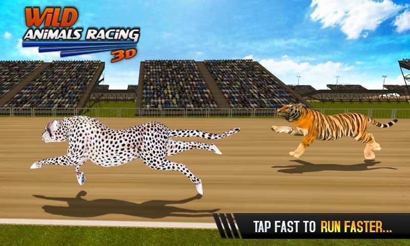 野生动物赛车3D