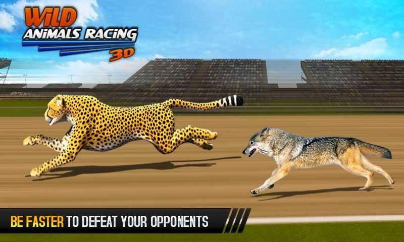 野生动物赛车3D截图1