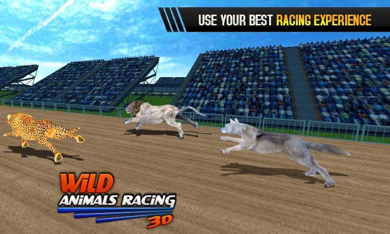野生动物赛车3D截图2