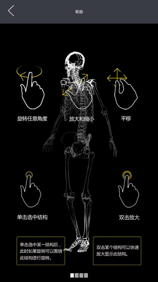 3Dbody解剖截图1