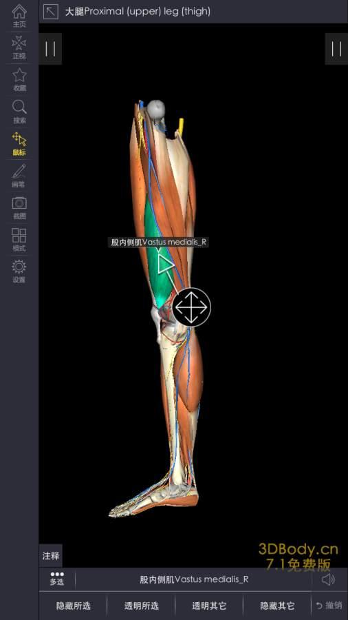 3Dbody解剖截图4