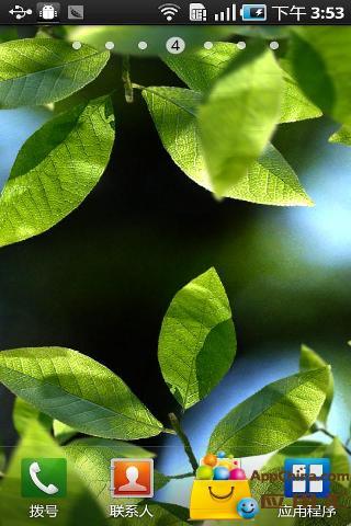 清新绿叶动态壁纸截图1