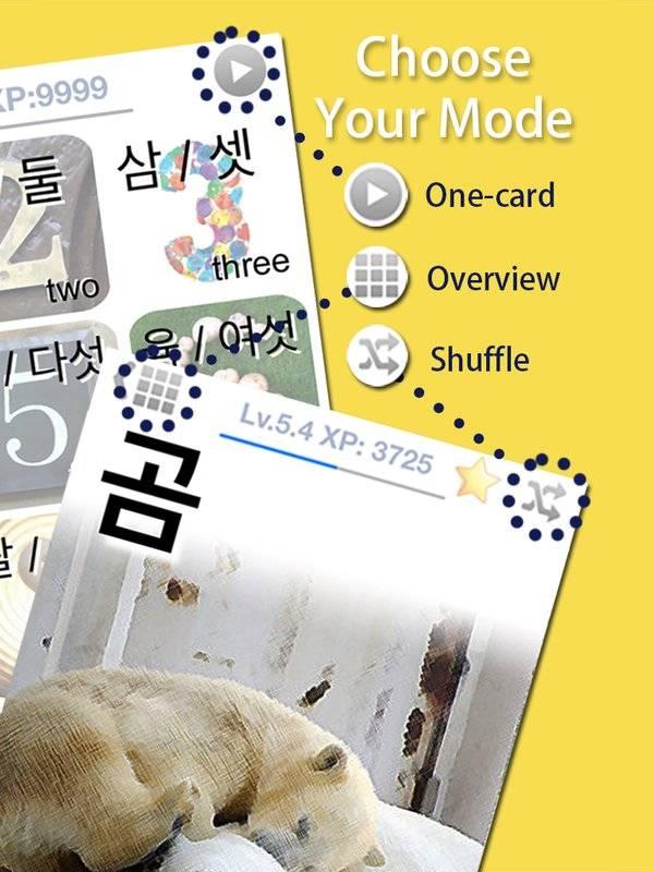 LingoCards韩语单字卡-学习韩文发音、韩国旅行短句截图2
