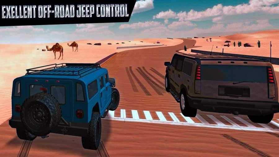 真正的沙漠野生动物园赛车
