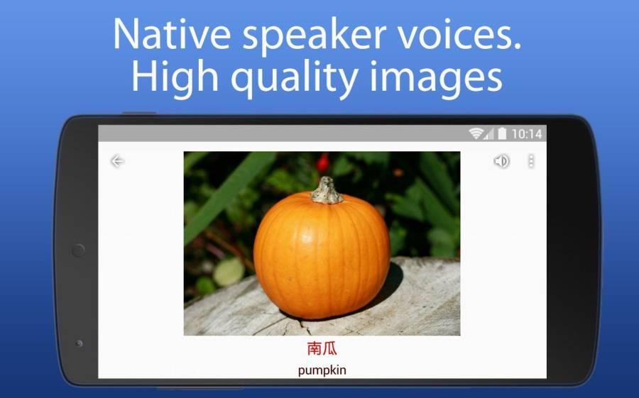 iSpeak 单词 8种语言 英语 德语 汉语 俄语 波兰语截图10