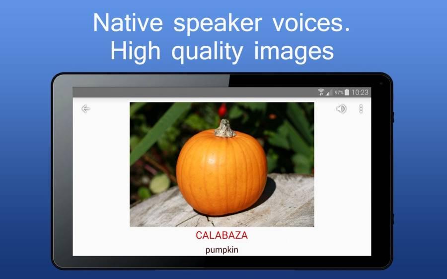 iSpeak 单词 8种语言 英语 德语 汉语 俄语 波兰语截图8