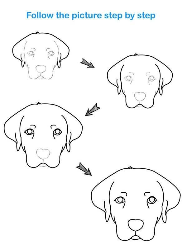 Draw Animal截图0