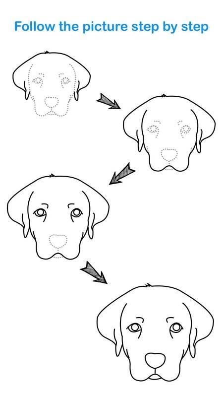 Draw Animal截图6