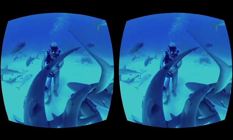 探索海底世界截图1