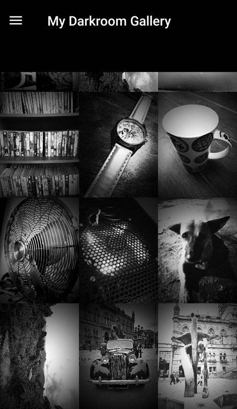Darkroom: B&W Photo Editor截图6