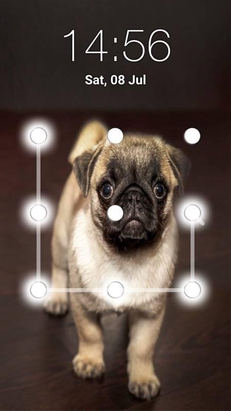 小狗图案锁屏截图0