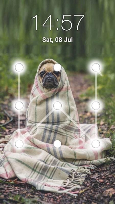 小狗图案锁屏截图1