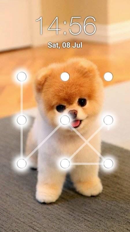 小狗图案锁屏截图2