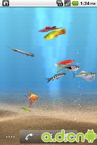 重力感应水族馆的鱼动态壁纸