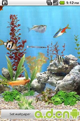 重力感应水族馆的鱼动态壁纸截图1