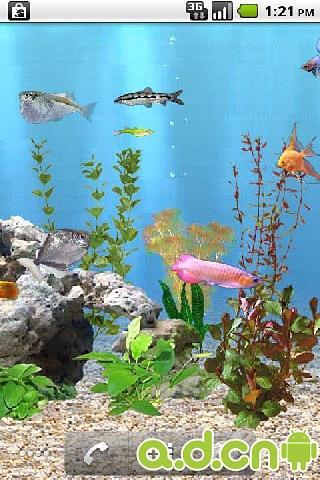 重力感应水族馆的鱼动态壁纸截图3