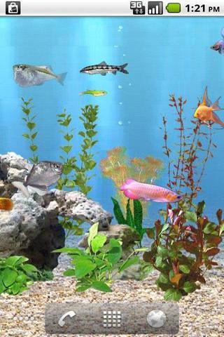 重力感应水族馆的鱼动态壁纸截图5