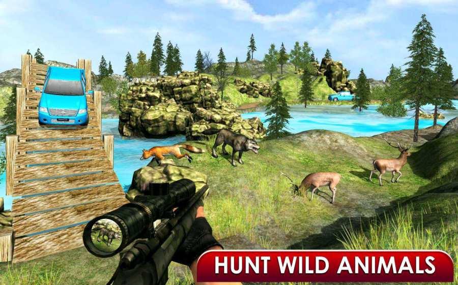 刺客 野生 丛林 狙击兵 动物 射击