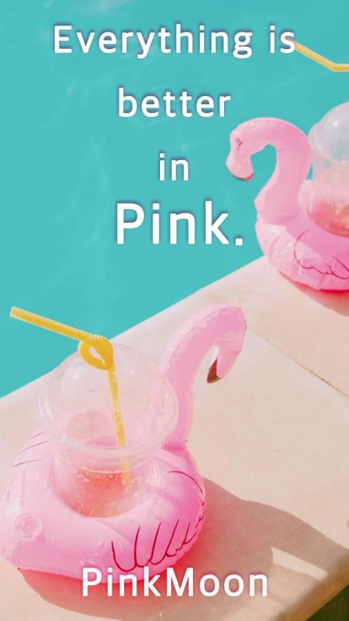 PinkMoon截图2