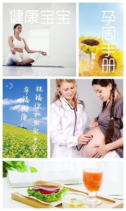 健康宝宝孕周手册