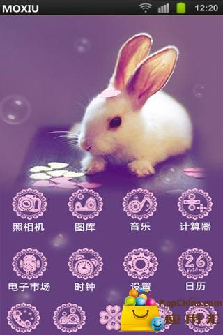 可爱兔子桌面主题—魔秀