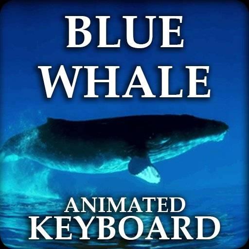 蓝鲸的键盘-蓝波的主题。
