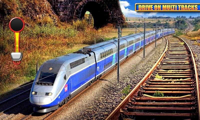 欧洲列车驾驶模拟3D截图2