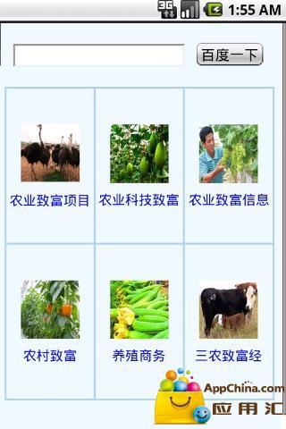 农业致富信息速查