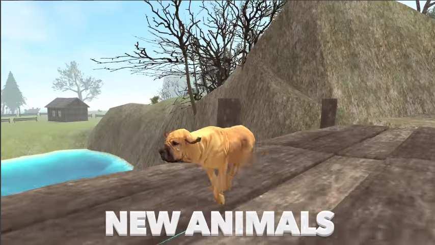 终极狗狗模拟器截图0