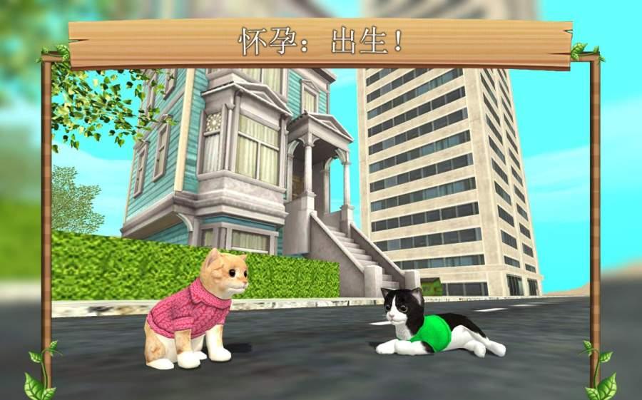 猫咪模拟截图1
