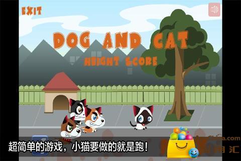 猫和狗 益智 App-愛順發玩APP