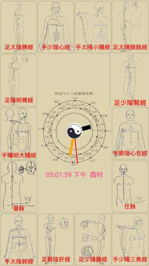 中医经络穴位流注截图2