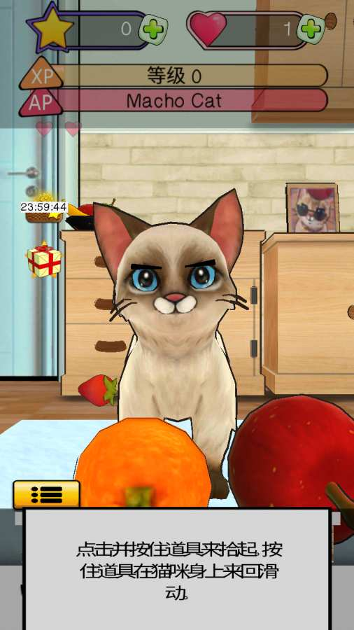 《狂刷猫咪》:宠物猫模拟器