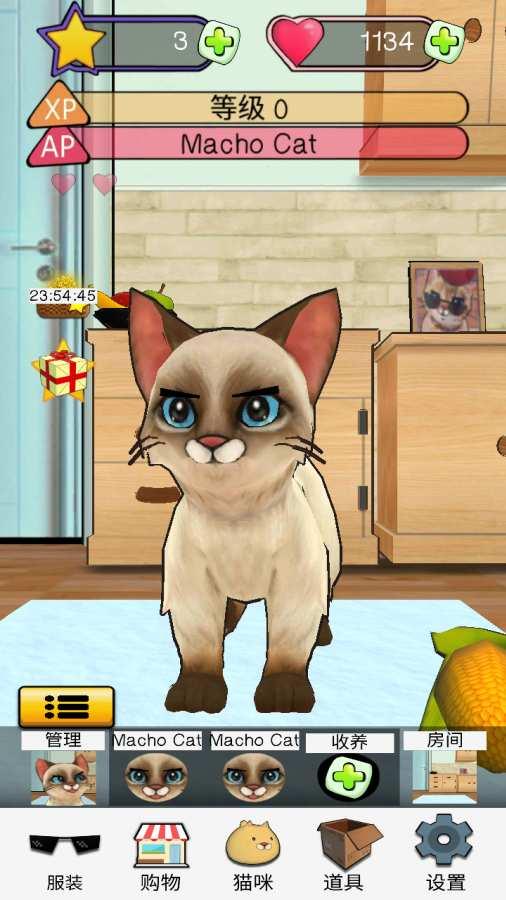 《狂刷猫咪》:宠物猫模拟器截图3