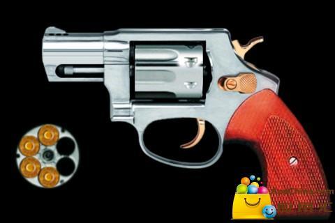 左轮枪截图1