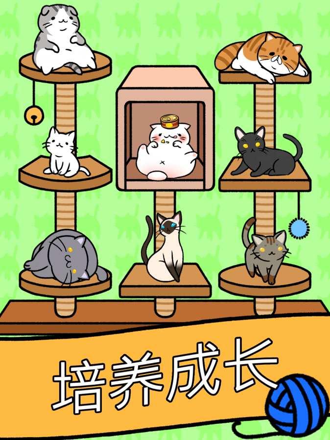 猫咪公寓截图2
