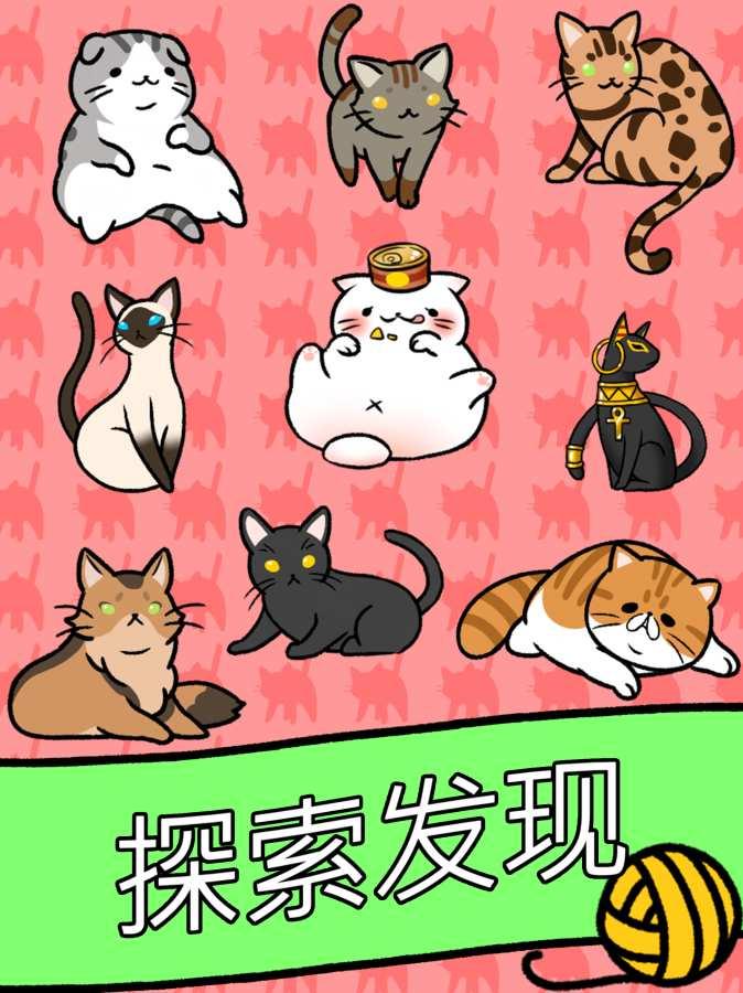 猫咪公寓截图3