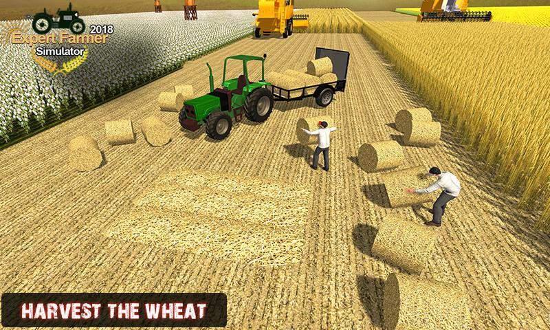 專家農夫模擬器2018年截图0