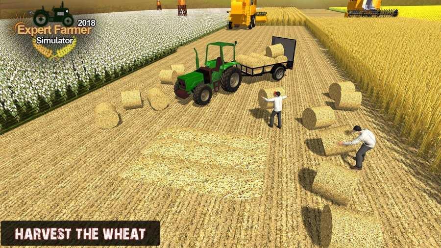 專家農夫模擬器2018年截图10