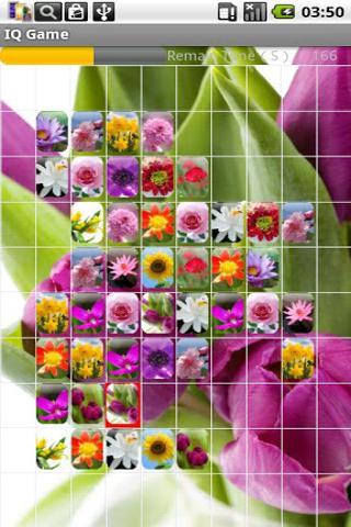 可爱花朵连连看4455