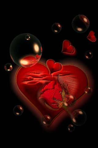 爱情玫瑰动态壁纸下载