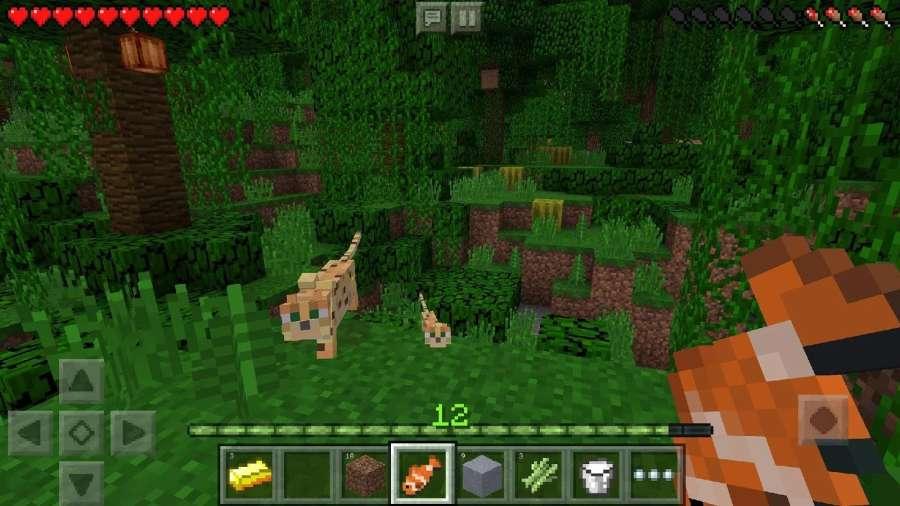 Minecraft截图2