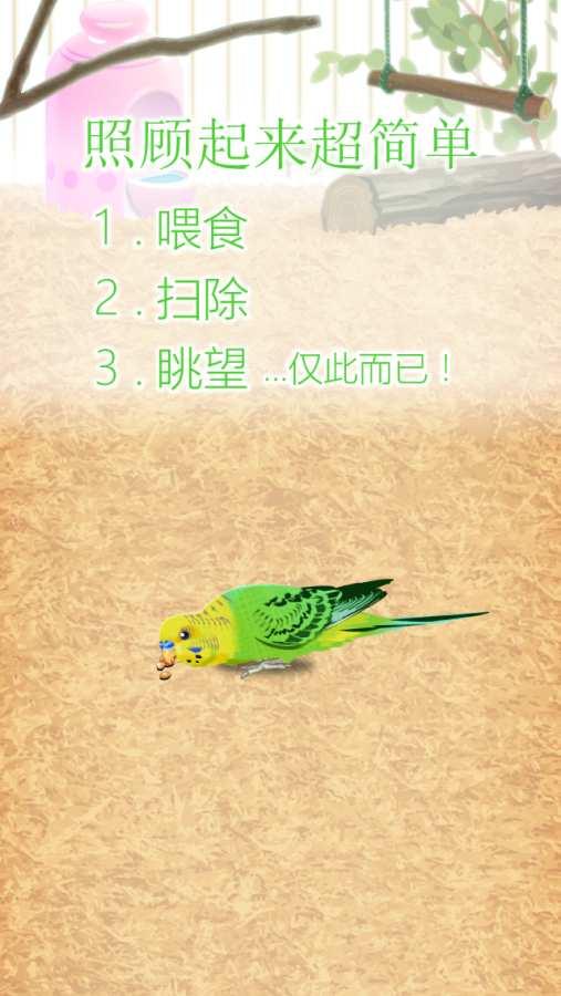 治愈的鹦鹉育成游戏截图1