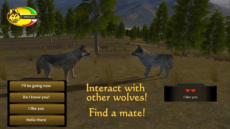 野狼谜踪截图2