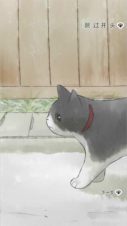 迷途猫截图3