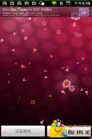 康乃馨动态壁纸