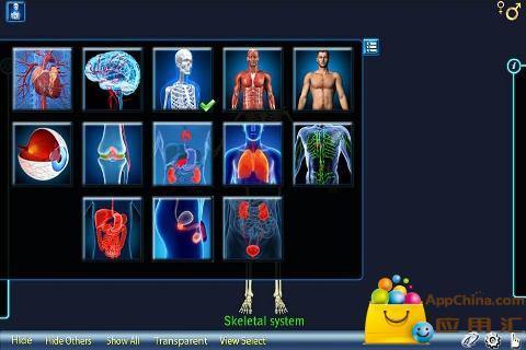 缩小和平移人体模型,软件中一共自带了超过3500个身体的部位,每一个